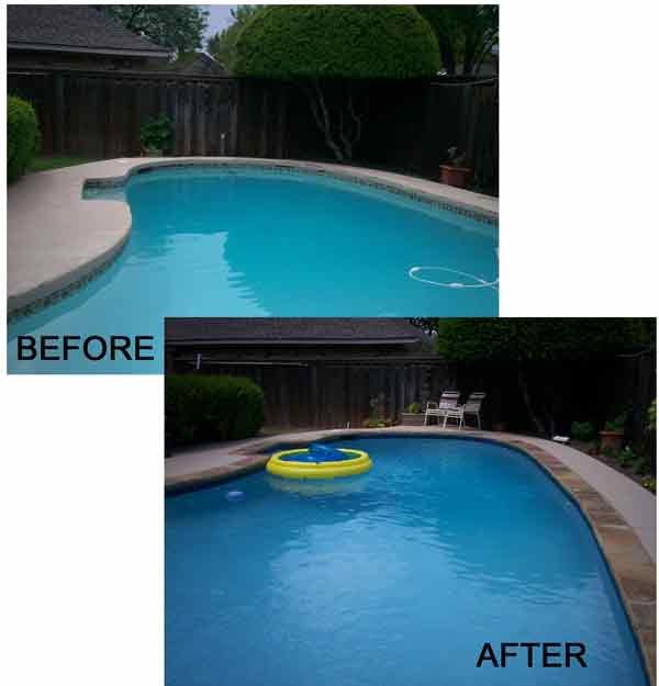 Holly Pool Before and After