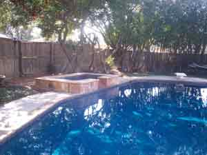 pool remodel with spa